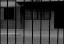 ALEGRE PATRICIA Aislamiento Social 008