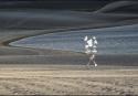 04-A-C2-Leiberman Raquel-Caminando en la arena
