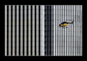 04-S-C4-Tamaroff Adrian-Mosquito mecanico