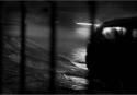 01-A-M3-Ribarich Ana-El grito que nadie escuchó