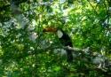 trinidad de pascale (6)