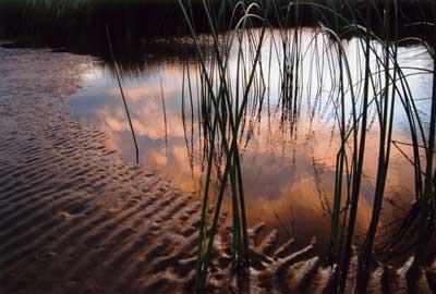 """foto: Maria Inés Fernandez - """"Atardecer en el rio"""""""